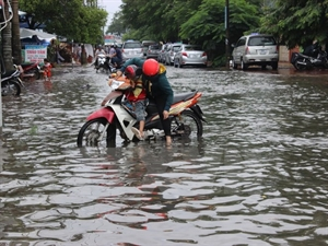 The Southern Institute for Water Resources Planning (SIWRP) has implemented a master plan to build three irrigation systems in response to climate change in Can Tho, Ca Mau and Vinh Long – the three most severely inundated cities in the Mekong Delta.