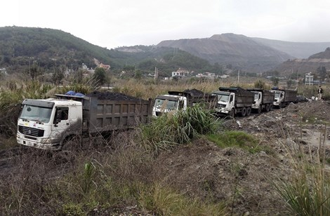 700 tons of smuggled coal seized in Quang Ninh