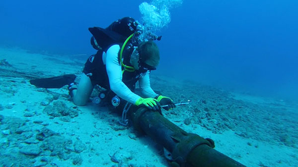 Repair of AAG undersea cable will take at least 3 weeks
