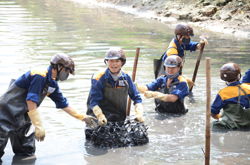 HCM City's canals cleaned at huge cost again polluted