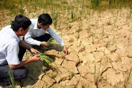 Vietnam, Germany launch climate change project