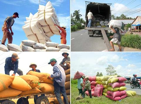 Agricultural exports increase by 12 percent in eight months