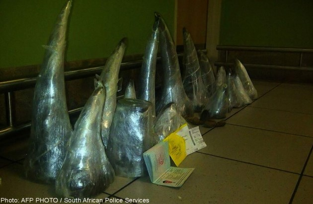 2 Vietnamese arrested in S.Africa with record haul of rhino horns
