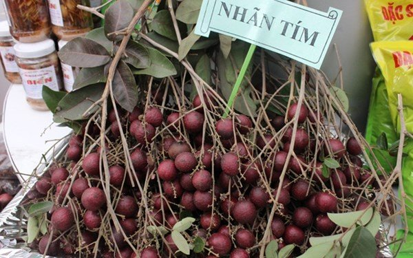 most special trees and fruits in 2014 in vietnam