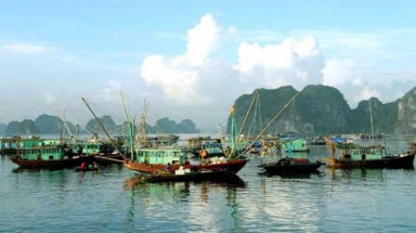 Ha Long tackles pollution by shifting floating villages