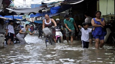 HCM City adapts to climate change