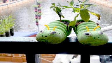 Hanoi painter grows vegetables with recycled products
