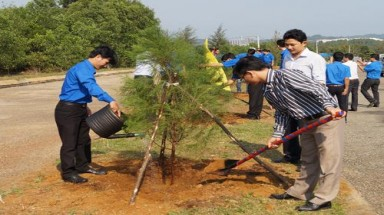 Central provinces launch tree-planting festival
