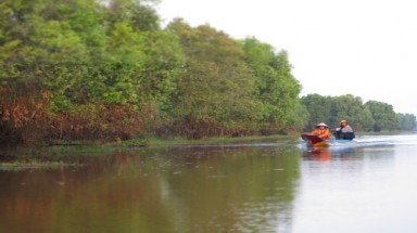 Tram Chim National Park deserves Ramsar title
