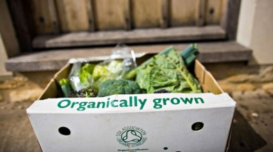 Organic food and drink sale rises after years of decline