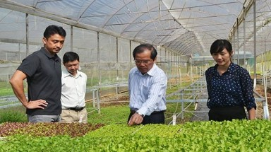 Vietnam eager to attract Japanese investment in agricultural projects