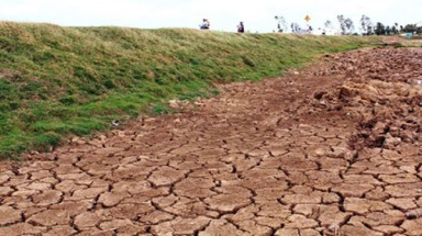 Mekong Delta faces crippling drought, more saline intrusion