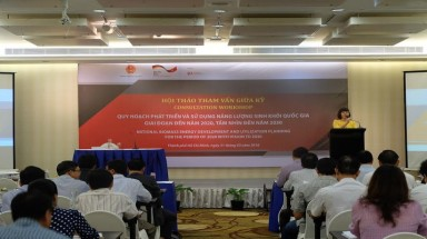 GERMANY SUPPORTS VIET NAM ON NATIONAL BIOMASS ENERGY DEVELOPMENT AND UTILISATION PLANNING