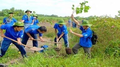 One million new trees to give HCM City a fresh look