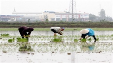 Mekong Delta stems drought, saltwater intrusion impacts