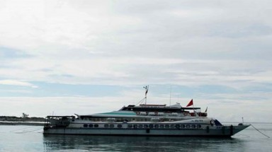 Quang Tri to purchase hydrofoil for island travel