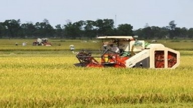 Vietnam willing to support Chad in agriculture