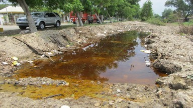 HCMC: officials busy attending meetings, chemicals flowing to canal