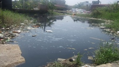 Polluted water kills thousands year