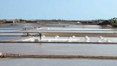 Hot weather lifts Ben Tre salt yield by 30%
