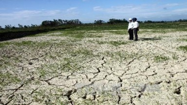 Drought forces south-central provinces to halt crop cultivation