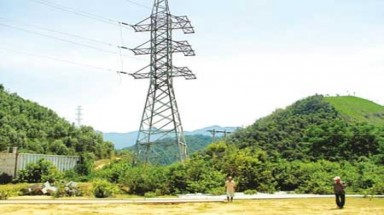 Hydropower Project makes forest land in Da Nang unused