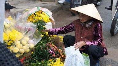 The beautiful flowers of Vietnam