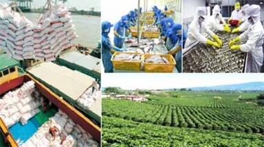 Ministries work to boost seafood, farm produce exports
