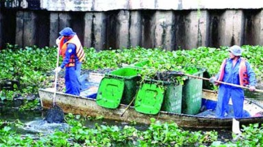 HCM City turns squalid canals into green spots