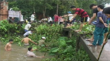 Water weed fights back in Binh Duong