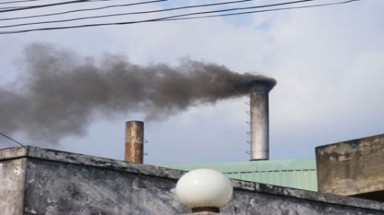 HCM City industrial plants continue to pollute