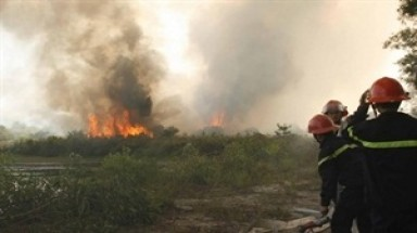 Fire sweeps through 10ha of forest in Thua Thien-Hue
