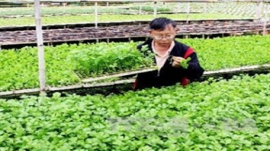 Vietnam seeks broader markets for farm produce