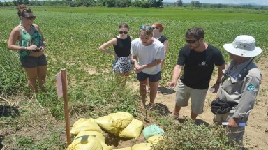 Foreign tourists destroy bombs in Quang Tri