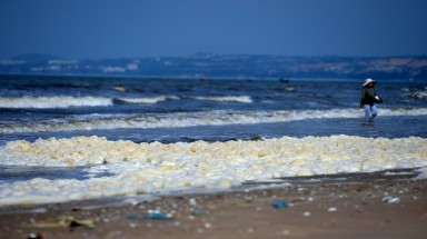 """Red tide"" attacks Mui Ne's coastal resorts"