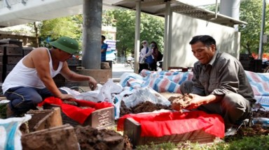 Nearly 200 sets of human remains found under Hanoi pavement