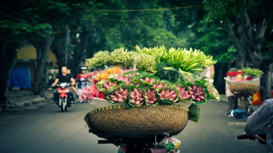 Colorful flowers on the streets of Hanoi