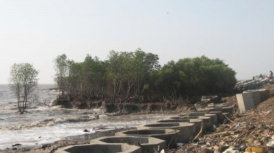 Kien Giang: damaged dykes pose great danger