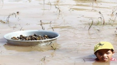Mekong hydropower plants deprive farmers of their livelihood