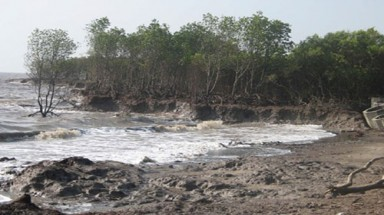 Erosion hits thousands all over Mekong Delta