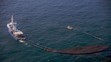 Marine operations, marine oil spill threatens biodiversity resources sea