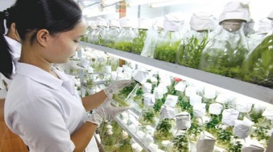 Boost for bio-technology