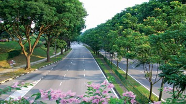 Korea supports two Vietnamese cities in green urban planning