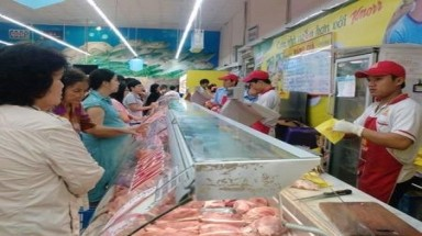 Vietnamese farmers in misery because of imported meat