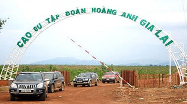 Deutsche Bank maintains ownership in Hoang Anh Gia Lai
