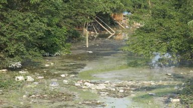 Toxic waste flows through Binh Yen
