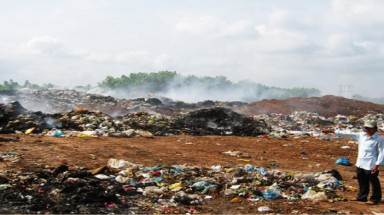 Landfill kills coffee fields in Dak Lak