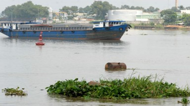 To save the Dong Nai River, consensus is needed
