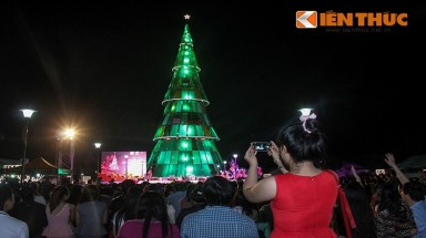 Vietnam's highest Christmas tree lit up in Binh Duong