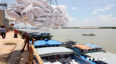 Rice exports: Is Vietnam subsidizing foreign consumers?